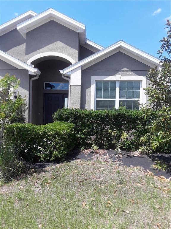 160 Blackstone Creek Road, Groveland, FL 34736 (MLS #A4436440) :: Team Bohannon Keller Williams, Tampa Properties