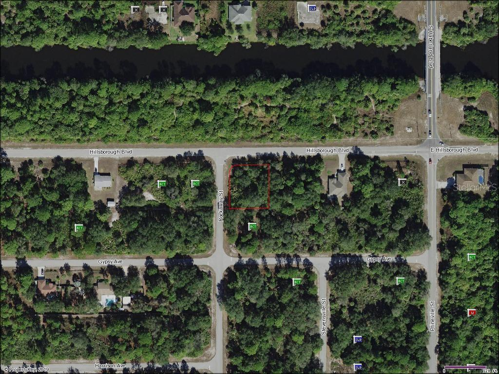 18461 Hillsborough Boulevard - Photo 1