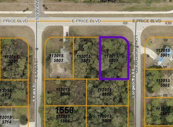 E Price Boulevard, North Port, FL 34288 (MLS #A4440356) :: The Edge Group at Keller Williams