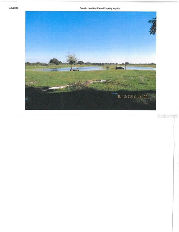 Address Not Published, Myakka City, FL 34251 (MLS #A4440833) :: The Duncan Duo Team