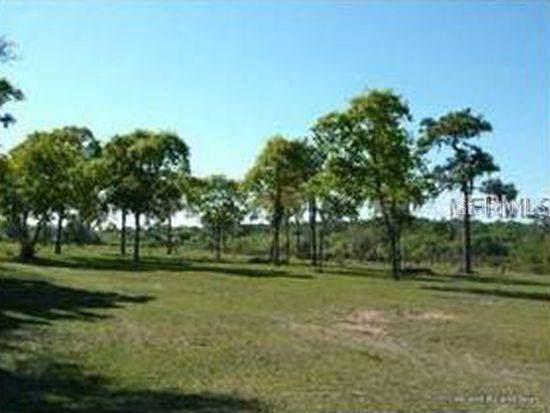 1141 397TH Court E, Myakka City, FL 34251 (MLS #A4441326) :: Sarasota Home Specialists