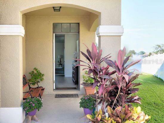 4914 San Palermo Drive, Bradenton, FL 34208 (MLS #A4441590) :: Bustamante Real Estate