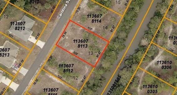 Carolina Street, North Port, FL 34288 (MLS #A4442402) :: Griffin Group
