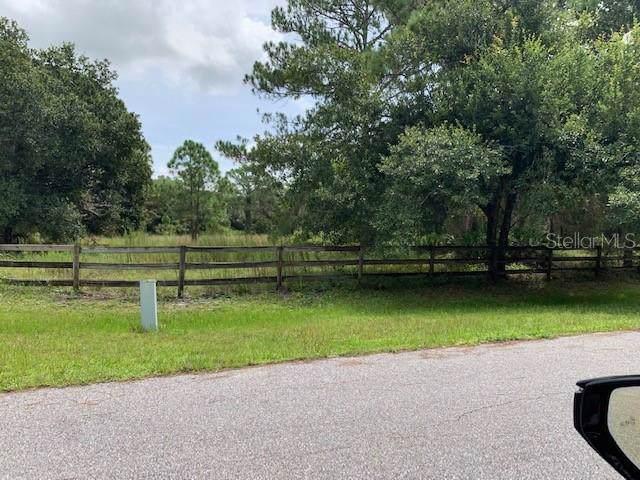Gator Creek Boulevard, Sarasota, FL 34241 (MLS #A4443943) :: Paolini Properties Group