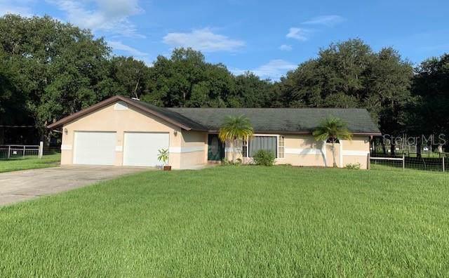 7195 NE Highway 17, Arcadia, FL 34266 (MLS #A4444026) :: Cartwright Realty