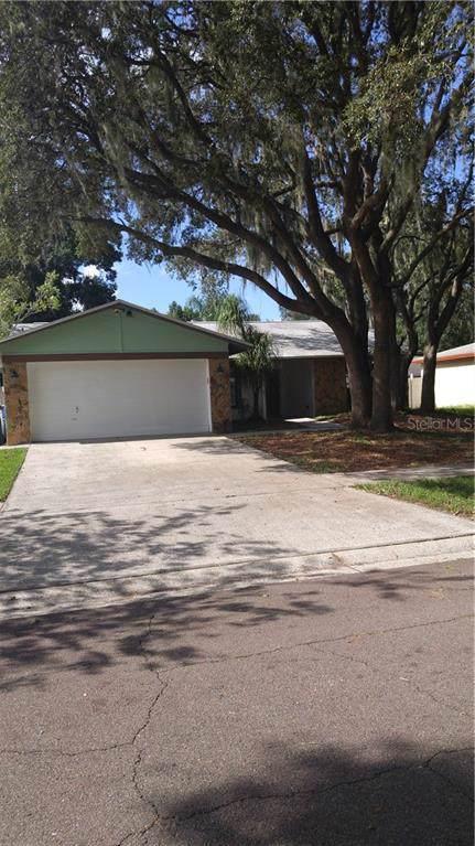 519 Wynnwood Drive, Brandon, FL 33511 (MLS #A4445081) :: Griffin Group
