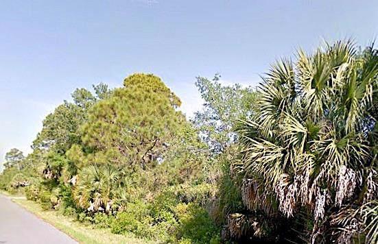 Rentscher Avenue, North Port, FL 34291 (MLS #A4446806) :: 54 Realty