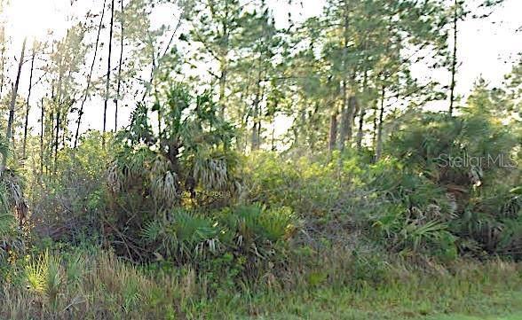 Snowdrift Terrace, North Port, FL 34288 (MLS #A4449254) :: Ideal Florida Real Estate