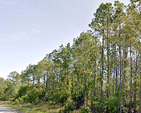 Boskoop Road, North Port, FL 34288 (MLS #A4449257) :: Premier Home Experts