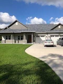 29027 Tupper Road, Wesley Chapel, FL 33545 (MLS #A4451278) :: Griffin Group