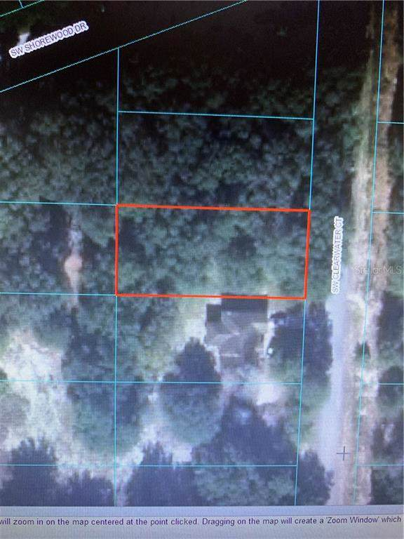 Lot 3 Sw Clearwater Court, Dunnellon, FL 34431 (MLS #A4453699) :: The Light Team