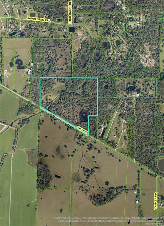 30145 Sr 70, Myakka City, FL 34251 (MLS #A4456331) :: Griffin Group