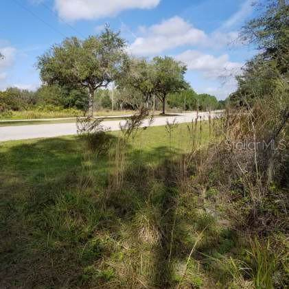 2005 411TH Street E, Myakka City, FL 34251 (MLS #A4457679) :: Mark and Joni Coulter | Better Homes and Gardens