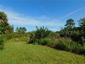 Orchard Circle, North Port, FL 34288 (MLS #A4459476) :: The Light Team