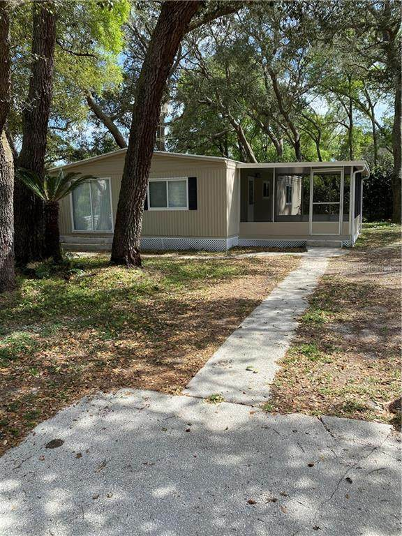 12611 Eloian Drive, Thonotosassa, FL 33592 (MLS #A4462424) :: Team Bohannon Keller Williams, Tampa Properties