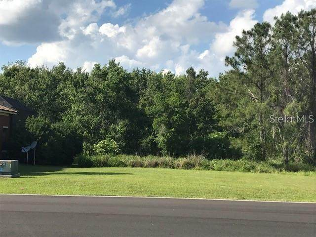 Lot K2 Blue Heron Circle, Tavares, FL 32778 (MLS #A4463603) :: The Duncan Duo Team
