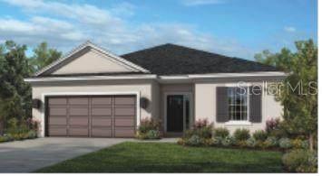 10530 Piedra Drive, Palmetto, FL 34221 (MLS #A4464270) :: Team TLC | Mihara & Associates