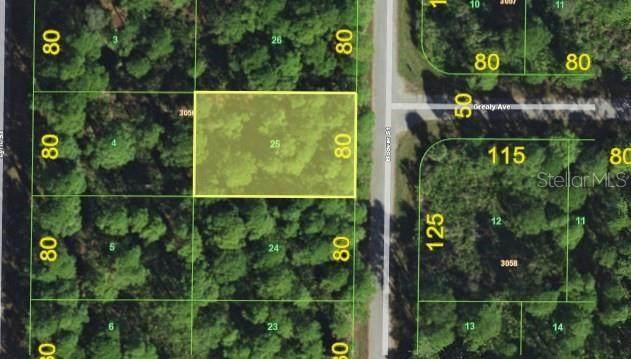 2441 Hoover Street, Port Charlotte, FL 33953 (MLS #A4464378) :: Premier Home Experts