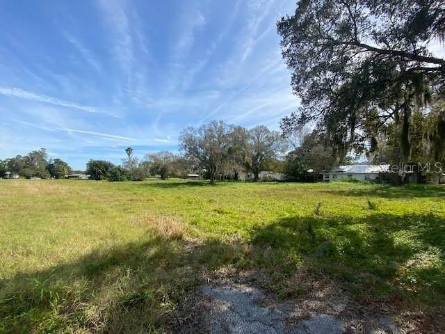 S Brink Avenue, Sarasota, FL 34239 (MLS #A4466080) :: Bridge Realty Group