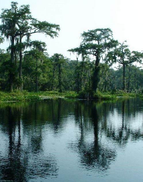 750 River Plantation Road - Photo 1