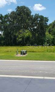 Address Not Published, Rotonda West, FL 33947 (MLS #A4468016) :: Gate Arty & the Group - Keller Williams Realty Smart