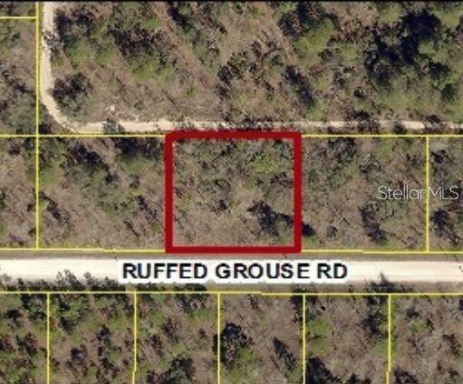 13303 Ruffed Grouse Road - Photo 1