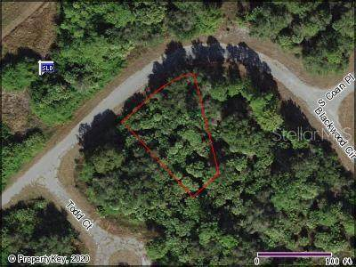 Blackwood Circle, North Port, FL 34288 (MLS #A4470850) :: Team Bohannon Keller Williams, Tampa Properties