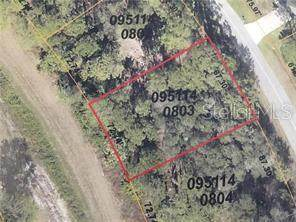 Rayfield Drive, North Port, FL 34291 (MLS #A4471165) :: Team Pepka