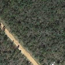 Koskiusko Drive, Alford, FL 32420 (MLS #A4471253) :: Young Real Estate