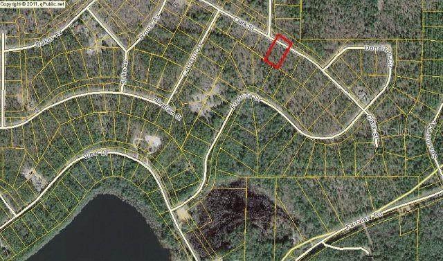 Clark Street, Alford, FL 32420 (MLS #A4471254) :: Team Buky