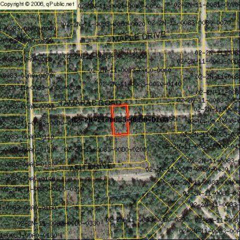 Tamarac Road, Marianna, FL 32448 (MLS #A4471264) :: Southern Associates Realty LLC