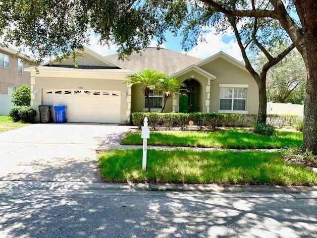 2731 Avon River Drive, Valrico, FL 33596 (MLS #A4474639) :: The Figueroa Team