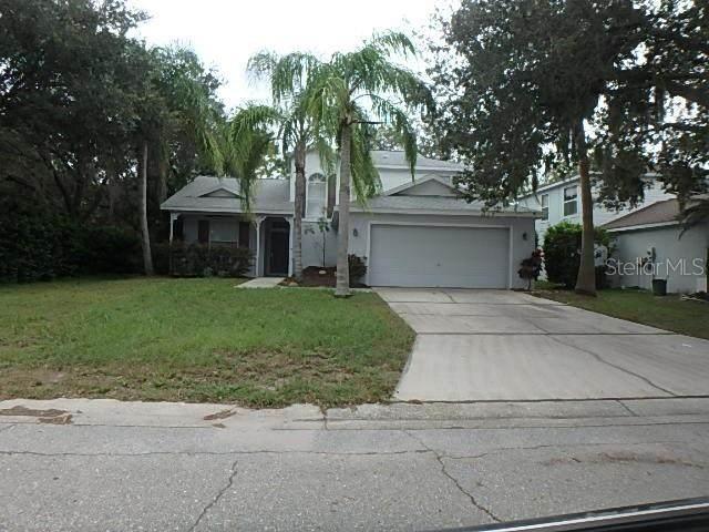 11302 3RD Avenue E, Bradenton, FL 34212 (MLS #A4478684) :: Armel Real Estate
