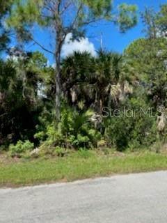 3382 Brentano Street, Port Charlotte, FL 33948 (MLS #A4479424) :: Heckler Realty