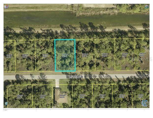 1041 Asther Street, Lehigh Acres, FL 33974 (MLS #A4483428) :: Burwell Real Estate