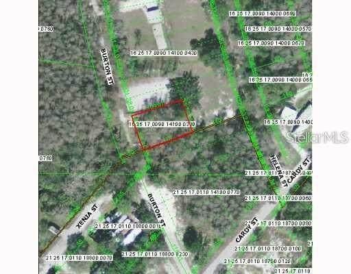 0 Burton Street, New Port Richey, FL 34654 (MLS #A4485535) :: Griffin Group