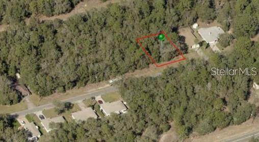 775 W Deacon Place, Citrus Springs, FL 34434 (MLS #A4486475) :: Young Real Estate