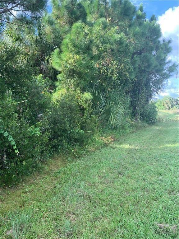 7215 Eldridge Street, Englewood, FL 34224 (MLS #A4487568) :: Young Real Estate