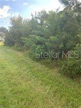 7223 Eldridge Street, Englewood, FL 34224 (MLS #A4487601) :: Young Real Estate