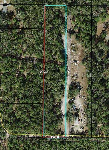 390 Donaldson Williams Road, Crawfordville, FL 32327 (MLS #A4488041) :: Griffin Group