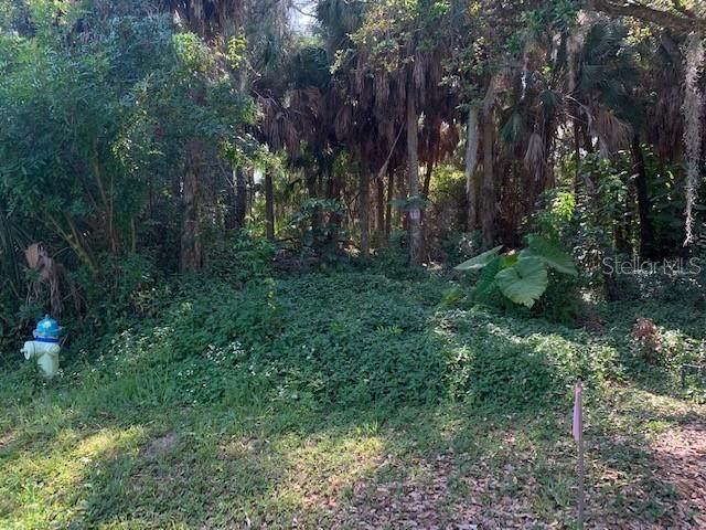 835 Hollowood Circle, Nokomis, FL 34275 (MLS #A4490101) :: BuySellLiveFlorida.com