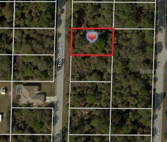 450 Troutdale Street, Port Charlotte, FL 33954 (MLS #A4496576) :: RE/MAX Local Expert