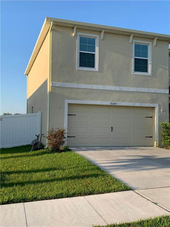36205 Jenny Lynne Circle, Zephyrhills, FL 33541 (MLS #A4497040) :: Griffin Group
