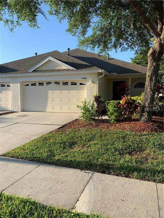 30933 Prout Court, Wesley Chapel, FL 33543 (MLS #A4497582) :: Team Bohannon Keller Williams, Tampa Properties