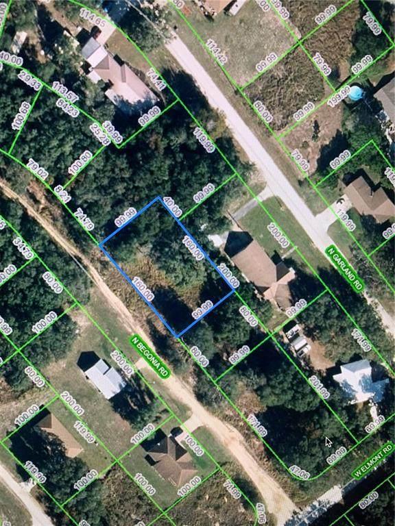 2794 N Begonia Road, Avon Park, FL 33825 (MLS #A4498749) :: Southern Associates Realty LLC