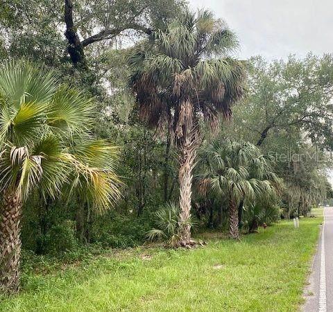 0 Elm Street, Welaka, FL 32193 (MLS #A4499472) :: Bustamante Real Estate