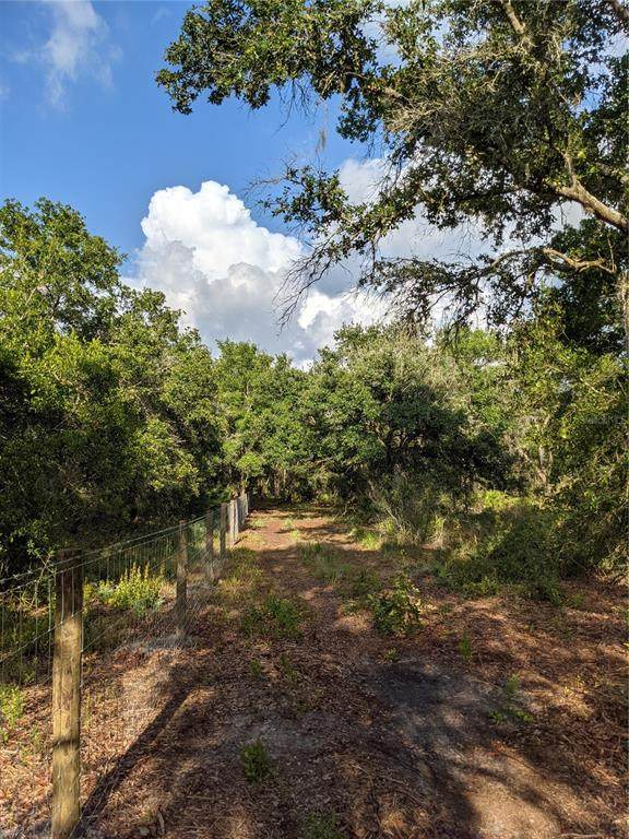 2347 NW Haile Dean Road, Arcadia, FL 34266 (MLS #A4500165) :: The Nathan Bangs Group