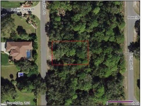 2456 Hiawatha Street, Port Charlotte, FL 33948 (MLS #A4500956) :: Southern Associates Realty LLC