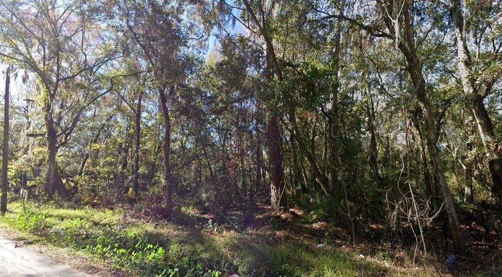 355 Seminole Lake Boulevard - Photo 1