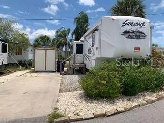 65 Terra Ceia Drive, Palmetto, FL 34221 (MLS #A4502626) :: Zarghami Group
